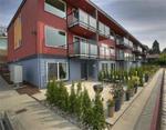 Urban_terrace_1